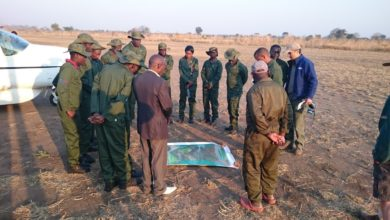 Photo of Poaching is a threat to iconic species – NGO