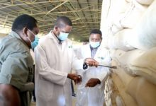 Photo of FRA targets 1m tonnes of maize