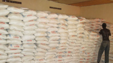 Photo of The impact of winter maize on mealie meal prices