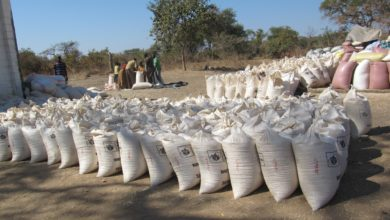 Photo of FRA should buy maize at reasonable price