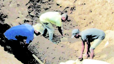 Photo of More illegal gold miners arrested, says DC
