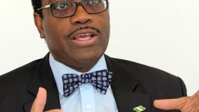 Photo of Covid-19 has offered new economic window – AfDB